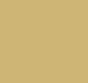 derechoInmoboliario02